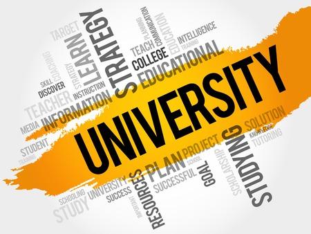 istruzione: UNIVERSITY nuvola parola, concetto di istruzione Vettoriali