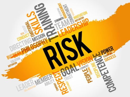 findings: RISK word cloud, business concept