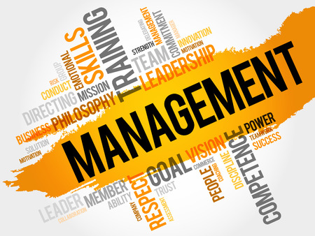 exceed: MANAGEMENT word cloud, business concept