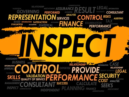 auditing: INSPECT word cloud, business concept