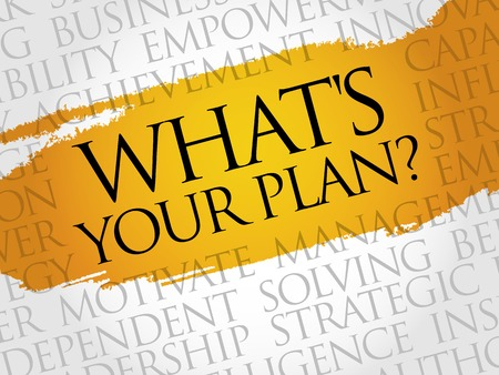 strategize: Whats Your Plan word cloud, business concept Illustration