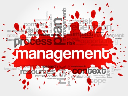 estimating: MANAGEMENT word cloud, business concept