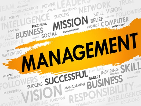 MANAGEMENT woordwolk, business concept