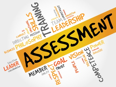 findings: ASSESSMENT word cloud, business concept