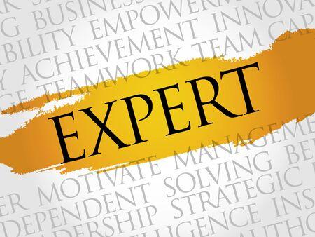 Expert word cloud, business concept