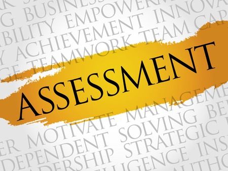 assessment: ASSESSMENT word cloud, business concept
