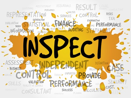 validity: INSPECT word cloud, business concept