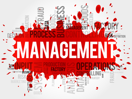 stakeholder: MANAGEMENT word cloud, business concept