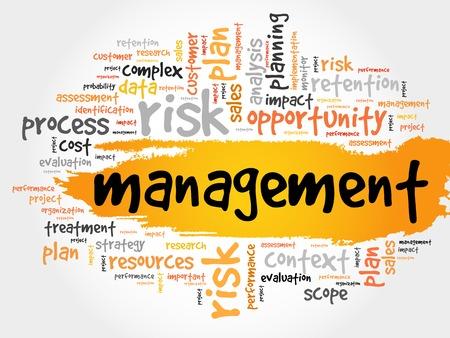 allocation: MANAGEMENT word cloud, business concept