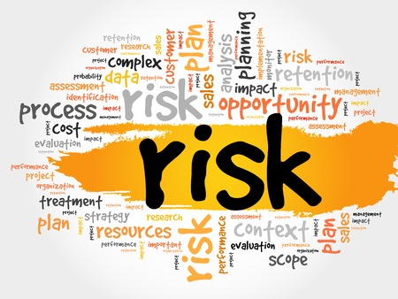 assess: Word Cloud with RISK related tags, business concept