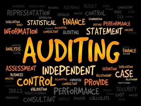 validity: AUDITING word cloud, business concept