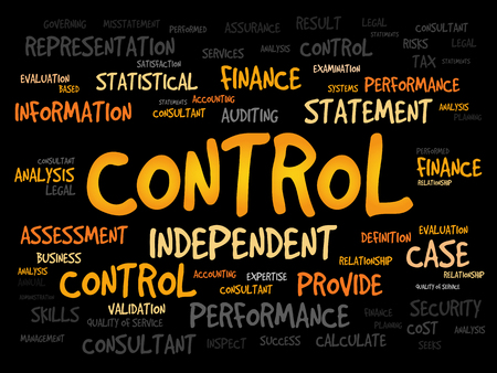 findings: CONTROL word cloud, business concept