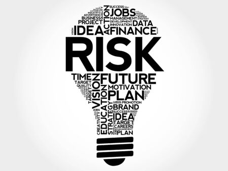 findings: RISK bulb word cloud, business concept