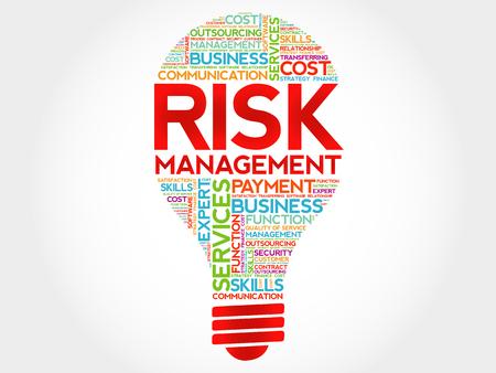vulnerability: Risk Management bulb word cloud, business concept