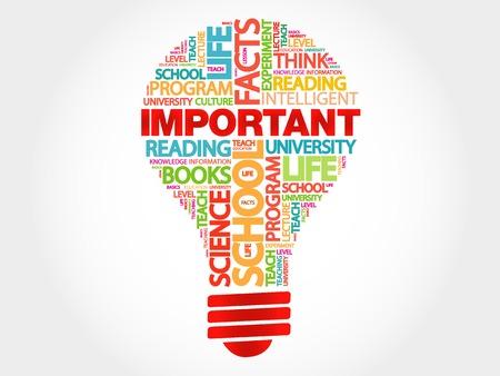 importance: IMPORTANT bulb word cloud, business concept