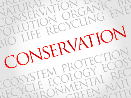 decreased: Conservation word cloud, environmental concept