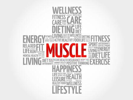 hormones: Muscle word cloud, health cross concept Illustration