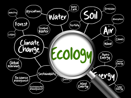 green environment: Ecology mind map flowchart concept with magnifying glass for presentations and reports Stock Photo