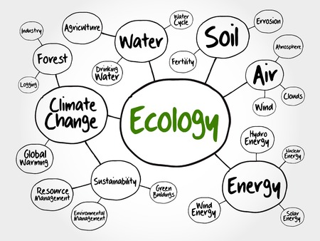 mindmap: Ecology mind map flowchart concept for presentations and reports Illustration