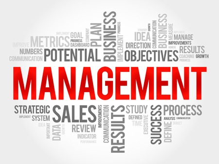 findings: Management word cloud, business concept Illustration