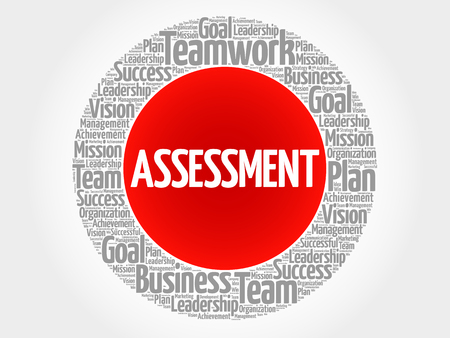 findings: ASSESSMENT circle word cloud, business concept Illustration