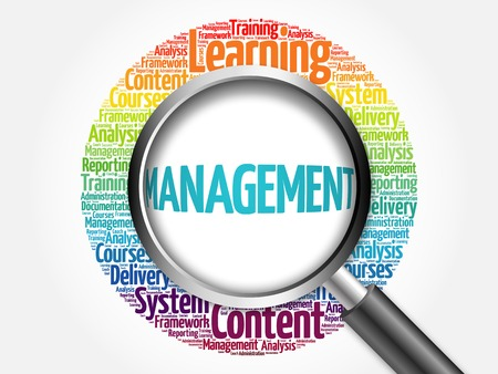 time critical: MANAGEMENT word cloud with magnifying glass, business concept Stock Photo