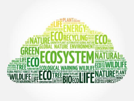 ecosistema: Ecosistema de la nube de palabra, conceptual ecología fondo verde