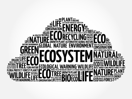 ecosystem: Ecosystem word cloud, conceptual green ecology background Illustration