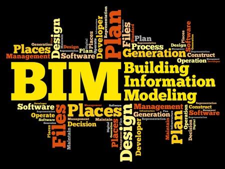 BIM - Building Information Modeling nuvola parola, concetto di business Archivio Fotografico - 60550331