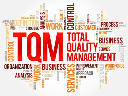 workforce: TQM - Total Quality Management word cloud, business concept background