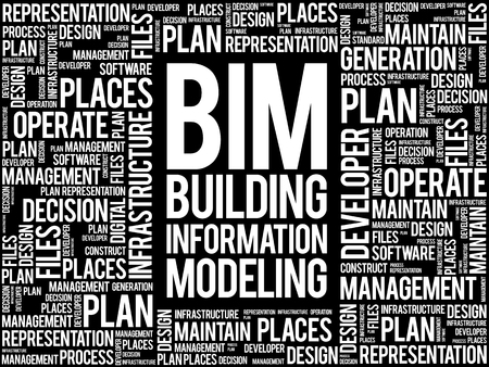 decisionmaking: BIM - building information modeling word cloud, business concept