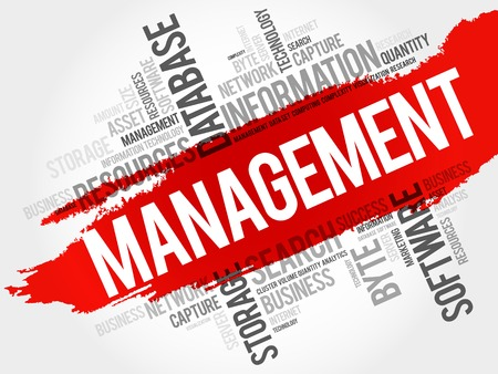 allocation: Management word cloud, business concept Illustration