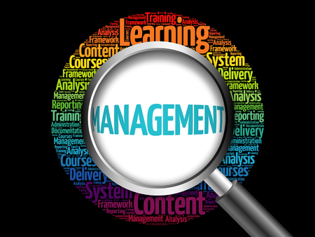 stakeholder: MANAGEMENT word cloud with magnifying glass, business concept 3D illustration