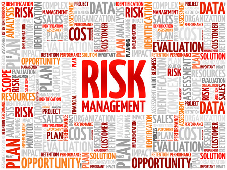 findings: Risk Management word cloud, business concept