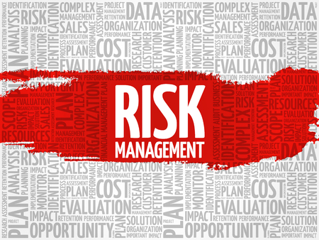 assessment system: Risk Management word cloud, business concept