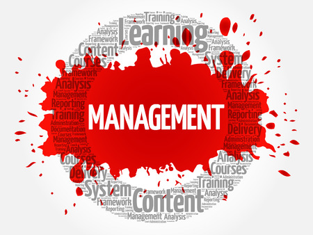 estimating: MANAGEMENT circle word cloud, business concept