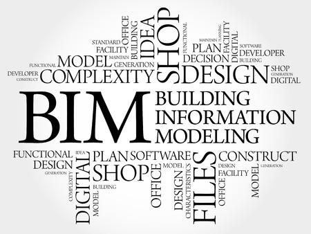 functional: BIM - building information modeling word cloud, business concept