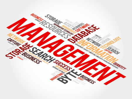 Management word cloud, business concept Illustration