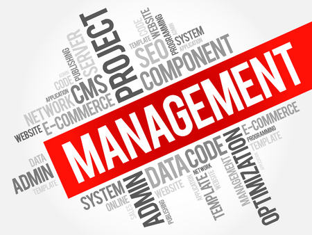 MANAGEMENT word cloud collage, business technology concept background