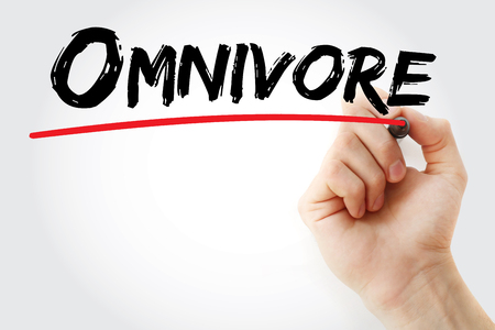 omnivore: Hand writing Omnivore with marker, concept background