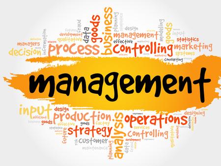管理の単語の雲、ビジネス コンセプト  イラスト・ベクター素材