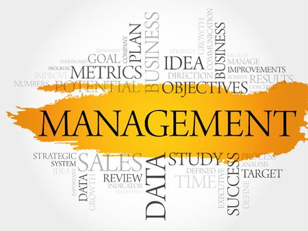 Management word cloud, business concept background