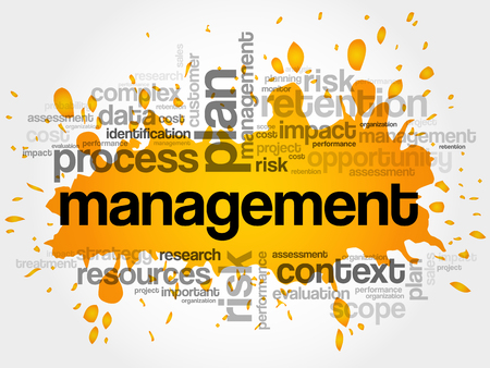 MANAGEMENT word cloud collage, business concept background