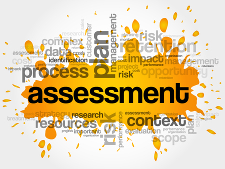 disaster: ASSESSMENT word cloud collage, business concept background