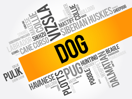 List of most popular dog breeds word cloud collage, animal concept background Vettoriali