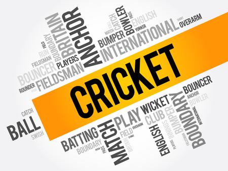 umpire: Cricket word cloud collage, sport concept background Illustration