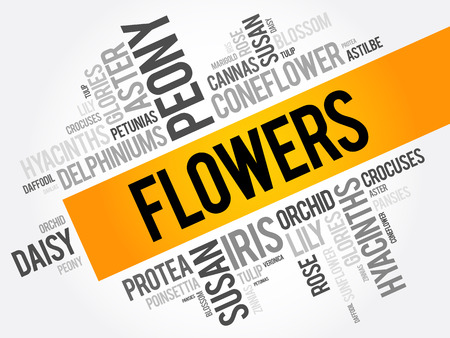aster: Flowers word cloud collage, concept background Illustration