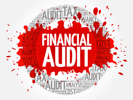 evaluate: Financial Audit word cloud, business concept