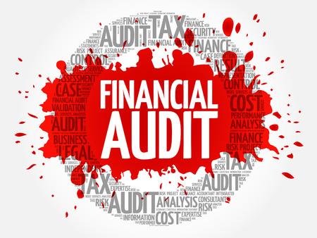 Financial Audit word cloud, business concept