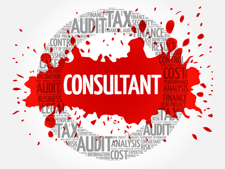 CONSULTANT word cloud, business concept